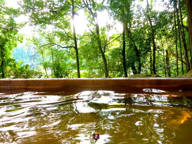 GOTOトラベルで栃木の露天風呂